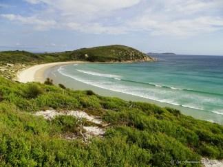 Picnic Bay à Wilsons Promontory - Australie