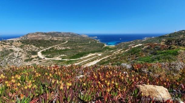 pointe de la Revellata - Calvi - Corse