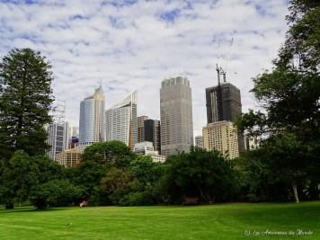 Jardin botanique de Sydney