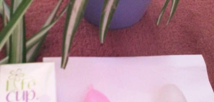 coupe menstruelle lifecup fleurcup