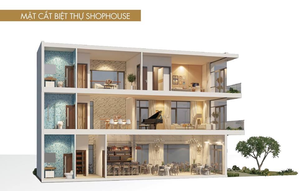 Mặt cắt thiết kế Biệt thự Shophouse Rio Vista