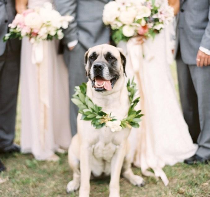 James & Rachel's Wedding by Heather Hawkins