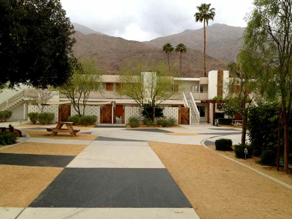 gorgeous grounds at the ace palm springs