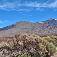 Tenerife - Volcan, Village ou Playa ?