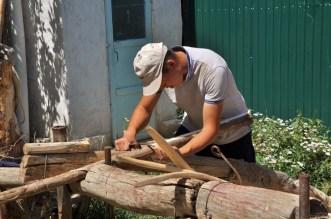 la taille du bois