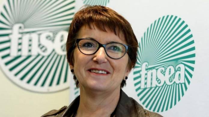 """""""Vuittonisation"""" de l'agriculture, PAC controversée… Christiane Lambert, Présidente de la FNSEA s'exprime."""