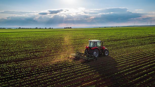 Objectif Terres, la nouvelle plateforme d'annonces pour l'installation des agriculteurs.