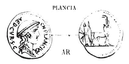 Denier Plancia _ RRC 432/1