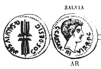 Denier Salvia _ RRC 523/1