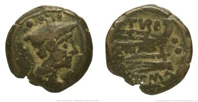 Read more about the article 777PA – Sextans Papiria – Papirius Turdus