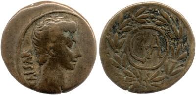 2492AU – Semis Auguste