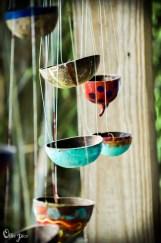 birds_bugs-3348