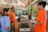 Guests learn about the Gaïac tree and receive seedlings to plant at home. (Photo by Jovito Hermoso)