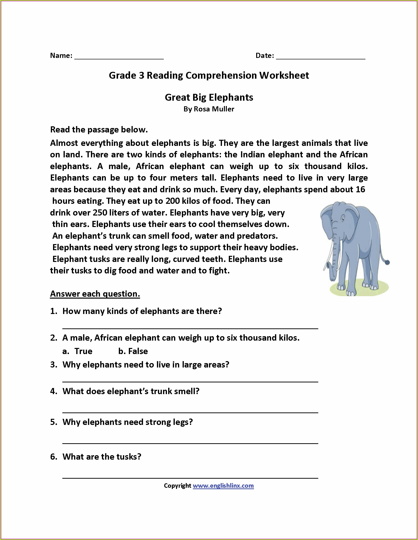 Mammals Worksheet Second Grade