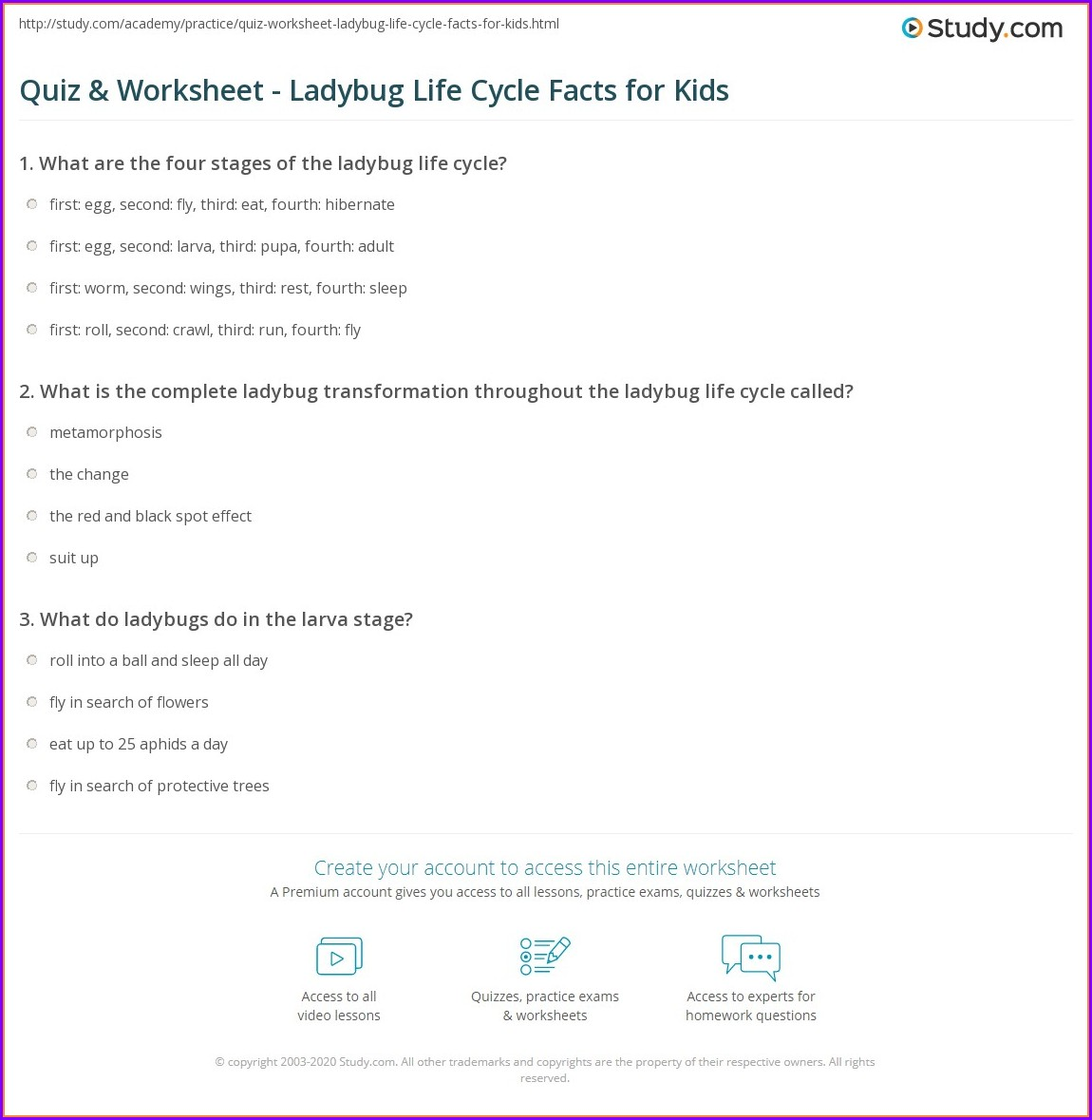 Butterfly Life Cycle Worksheet Kindergarten