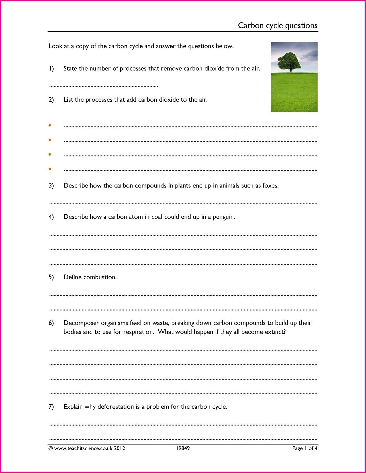 The Carbon Cycle Worksheet Answers Biology