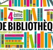 Vignette-Vide-Bibliotheque-Amis-du-Salon-du-Livre