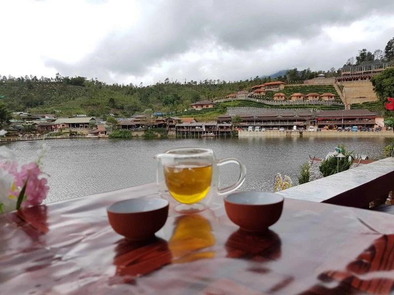 Thaïlande, le Chinese Village et ses cultures de thé 🏯 4