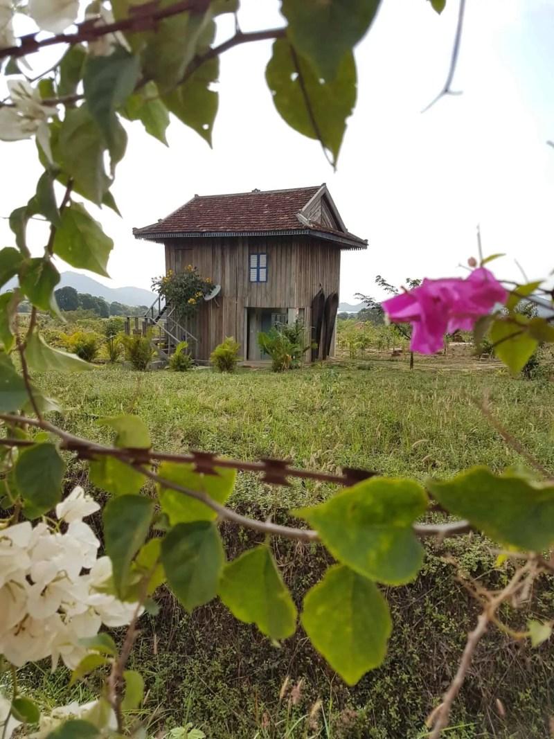 Cambodge, découverte du célèbre poivre de Kampot 🌶 12