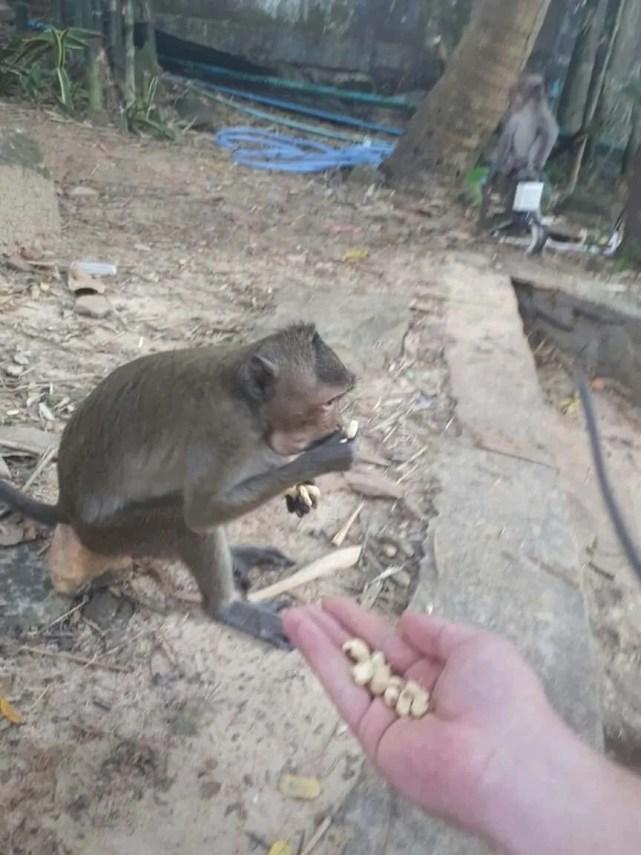 Cambodge, 4 jours au paradis dans le plus bel hôtel de Sihanoukville 😍 11