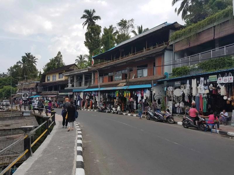 Bali, les rizières de Tegallalang et le temple Pura Tirta Empul🌱 19