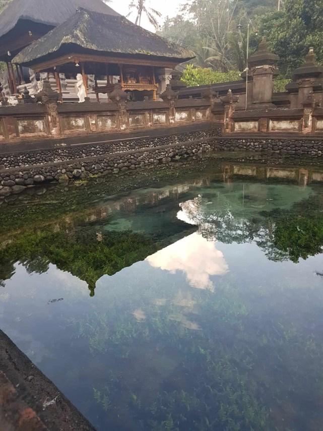 Bali, les rizières de Tegallalang et le temple Pura Tirta Empul🌱 24