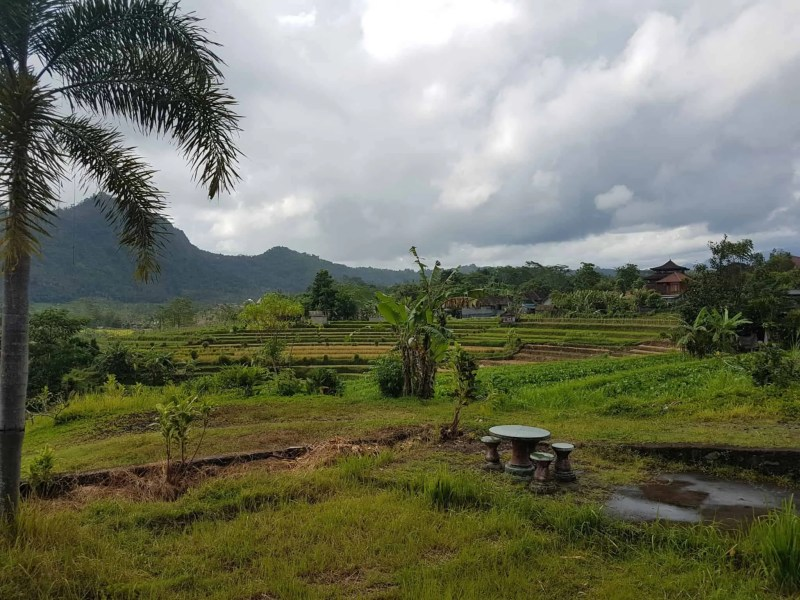 Bali, le joli et atypique temple Goa Gajah 🛕 12