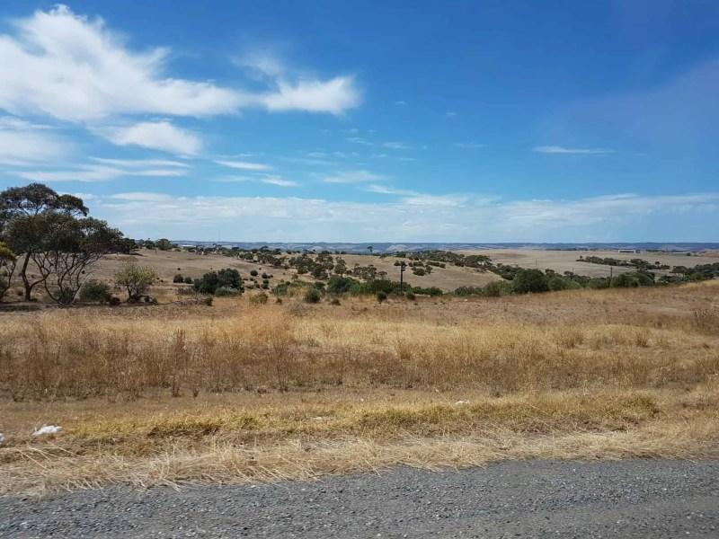 Australie, dégustation de vin et découverte de la réserve Towilla Yerta 🌅 5
