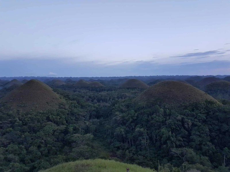 Philippines, visite du sanctuaire des tarsiers 🐒 12