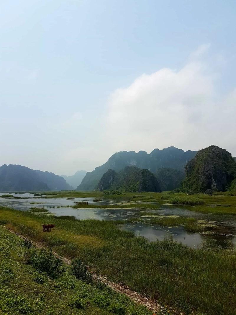 Vietnam, la magnifique réserve naturelle de Vân Long 🌾 19