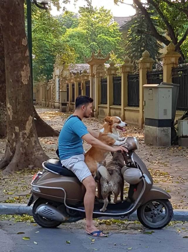 Vietnam, trois jours à découvrir Hanoï 👟 6