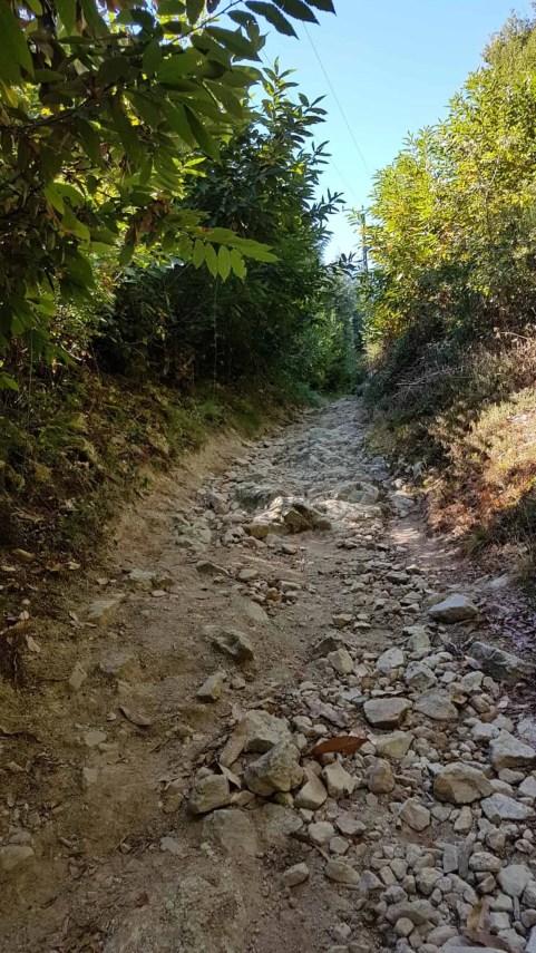 Chemin de Compostelle, arrivées à Massip nous avons droit à notre petit bonheur du quotidien 🎁 15