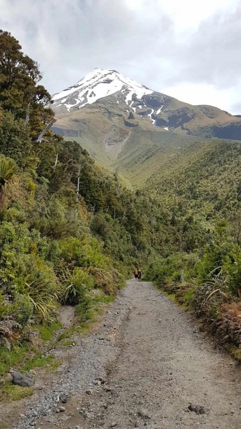 Nouvelle-Zélande, rando Holly Hut Track avec vue sur le Mont Taranaki ❤ 22