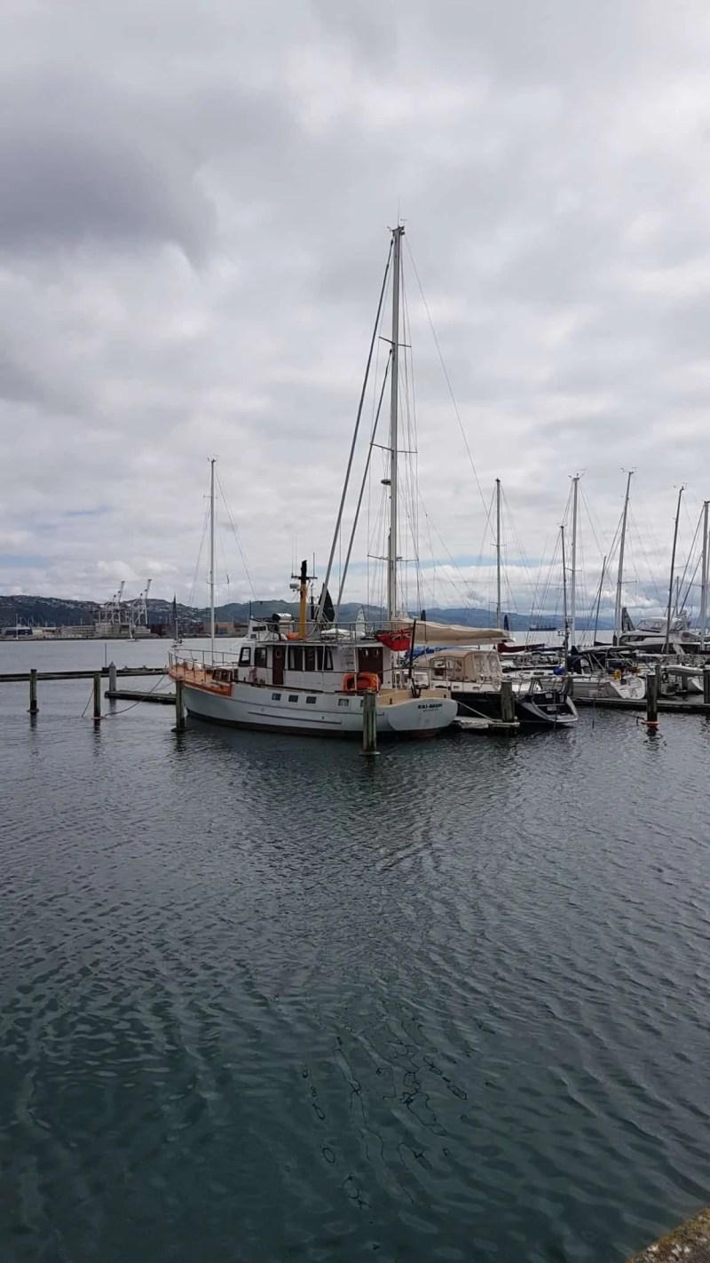 Nouvelle-Zélande, on visite  Wellington avant d'embarquer pour l'île du Sud ⛴ 1