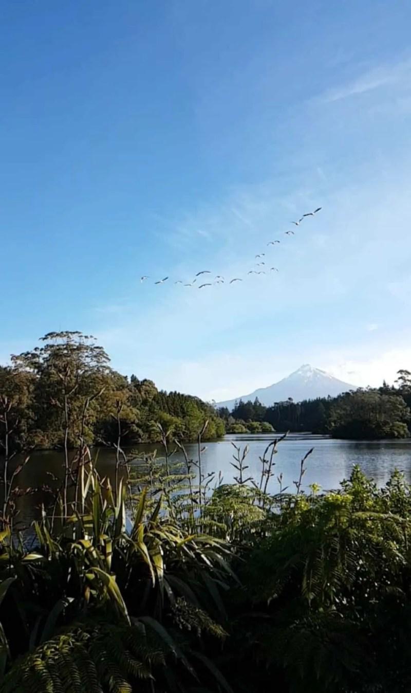 Nouvelle-zelande, le lac Mangamahoe une petite merveille 🤩 13