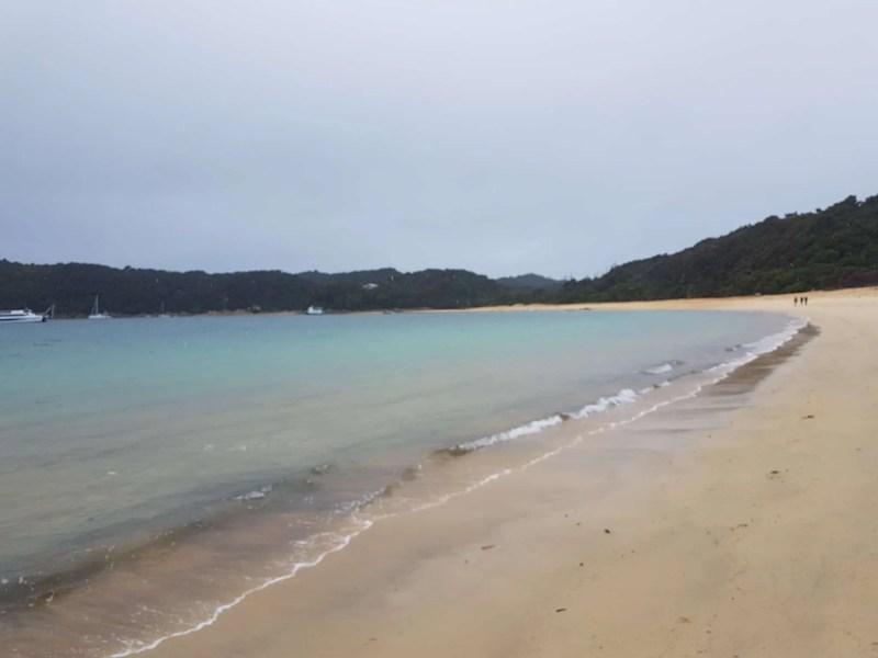 Nouvelle-Zélande, 24 km de randonnée sous la pluie dans le parc d'Abel Tasman 🌧 28