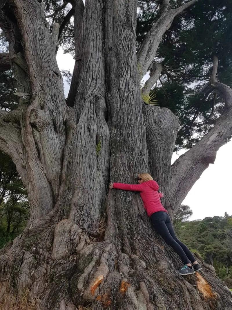 Nouvelle-Zélande, une semaine de HelpX chez la reine Lucy 👑 13