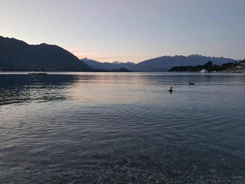 Nouvelle-Zélande, Wanaka notre ville coup de coeur ❤ 4