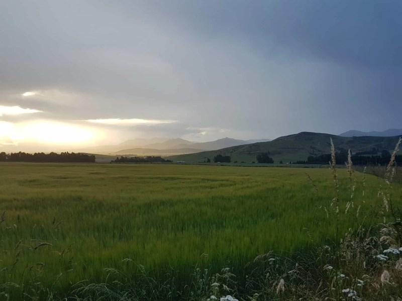 Nouvelle-Zélande, à la découverte de Queenstown et de sa région 🚂 12