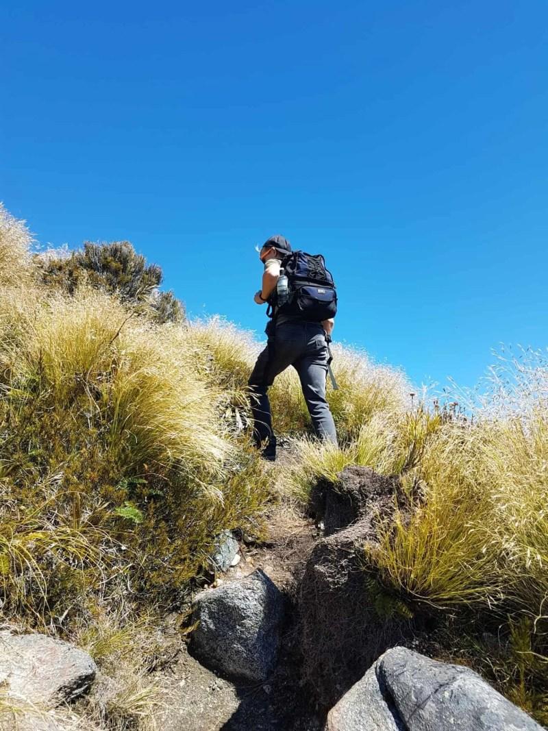 Nouvelle-Zélande, la Mount Burns Tarns Track une rando hors des sentiers battus 👟 8