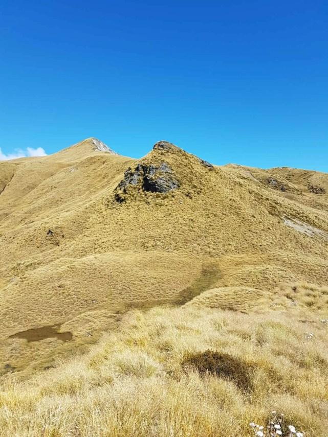 Nouvelle-Zélande, la Mount Burns Tarns Track une rando hors des sentiers battus 👟 16