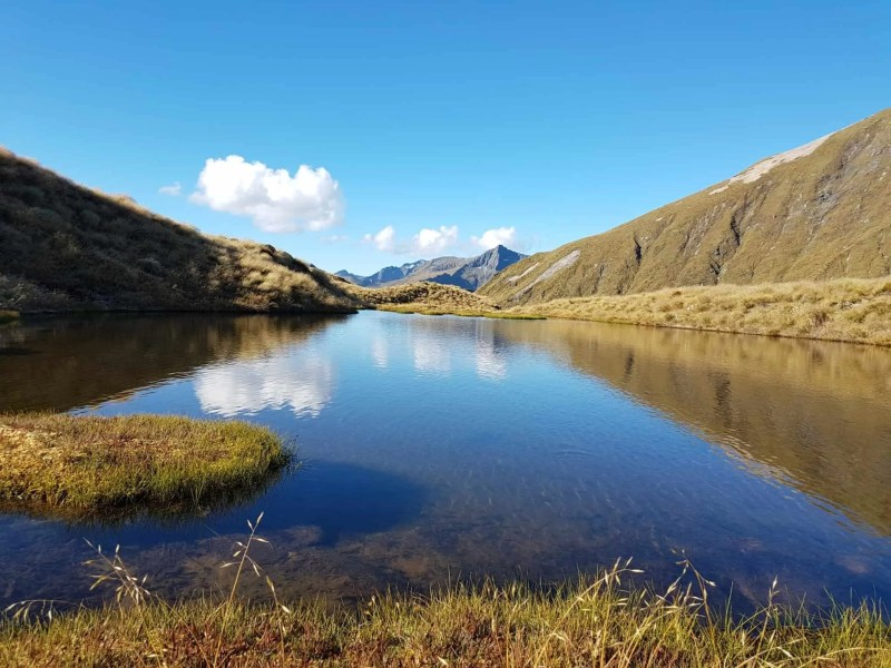 Nouvelle-Zélande, la Mount Burns Tarns Track une rando hors des sentiers battus 👟 22