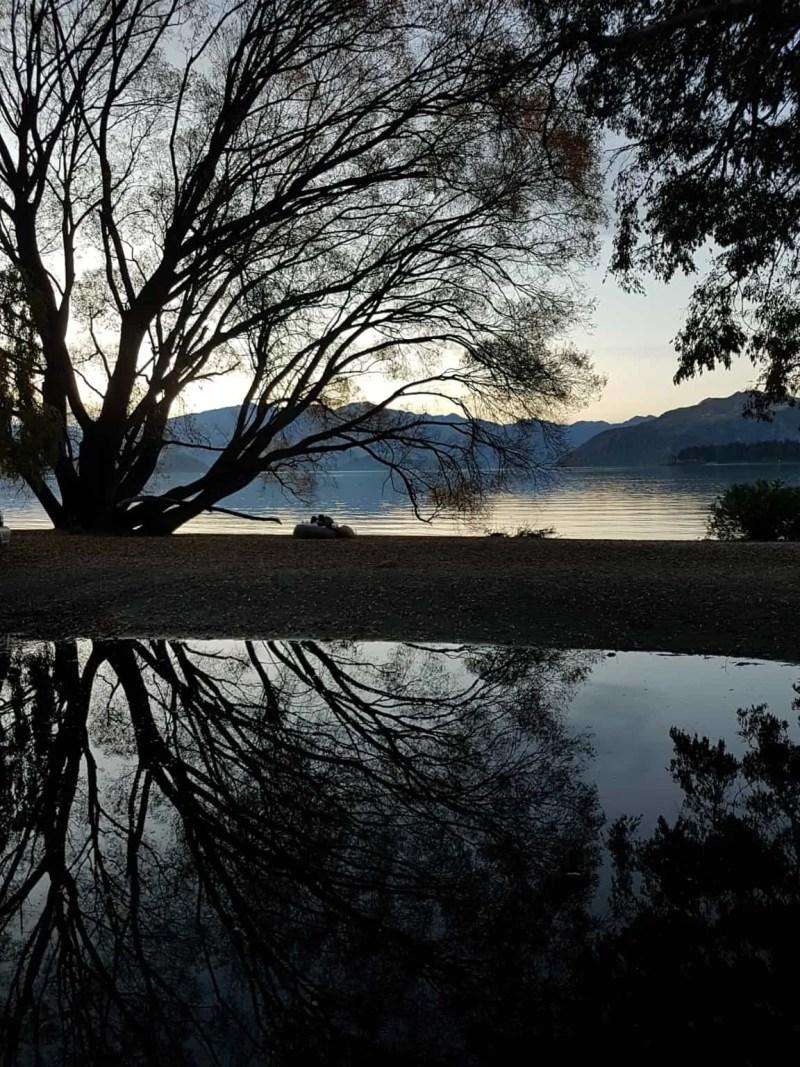 Nouvelle-Zélande, derniers  instants de notre trip en NZ 🖐 9