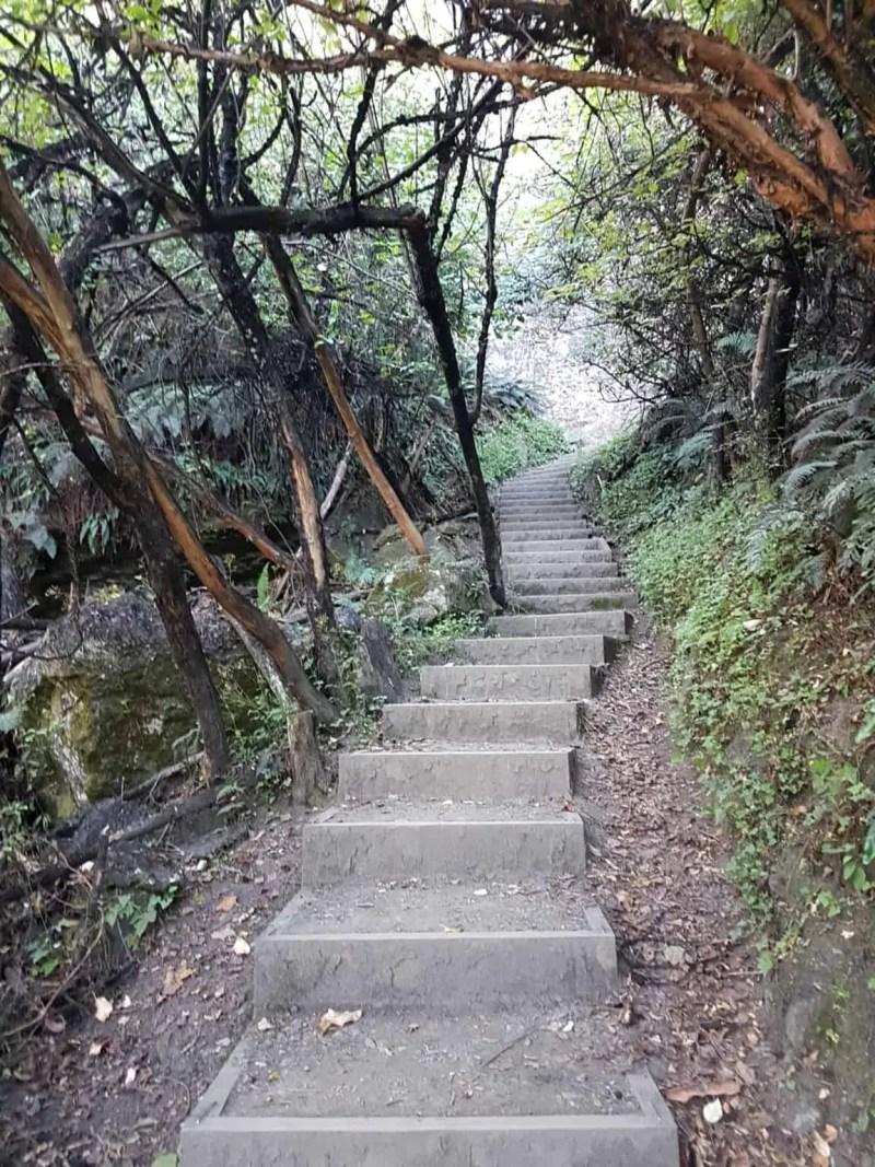 Nouvelle-Zélande, la Rocky Mountain Track une randonnée méconnue des touristes 🤩 7
