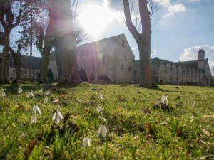 vue du parc de l'abbaye de Royaumont