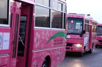 La vérité sur les rumeurs de bus roses à Rabat