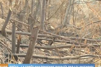 Brésil: la forêt amazonienne ravagée par les incendies (VIDEO)