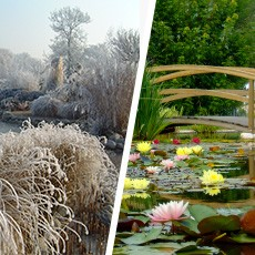 bache pour votre bassin de jardin