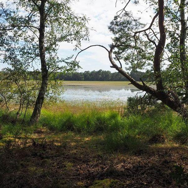 Vue de l'étang des Levrys proposé pour les JEP 2020