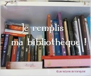Je remplis ma bibliothèque pendant les vacances (août 2017)